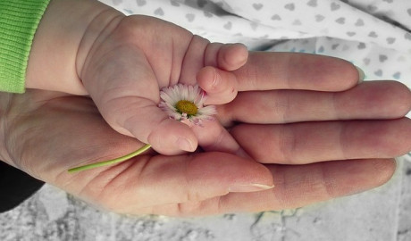 Desarrollo de la sexualidad infantil: el primer año de vida